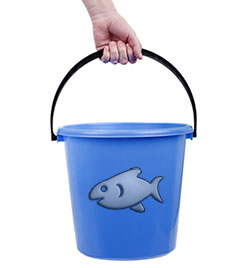 Bucket used for fish tank water changes