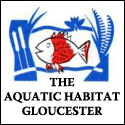 The Aquatic Habitat