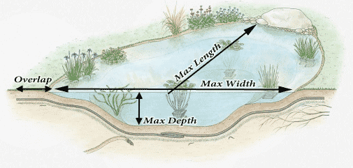 cross section showing pond liner size